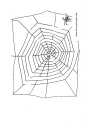 maze03 (1).PNG