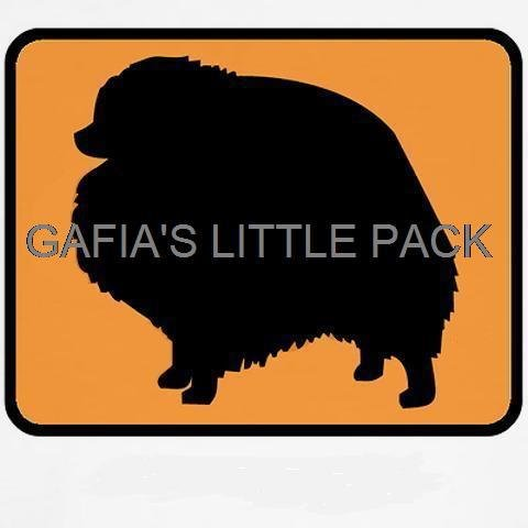 Gafia's Little Pack001.jpg